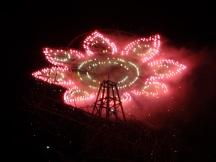 fireworks flower puerto esondido