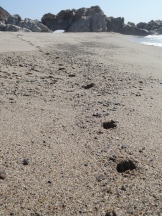 foot prints down beach