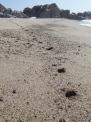 foot prints down beach