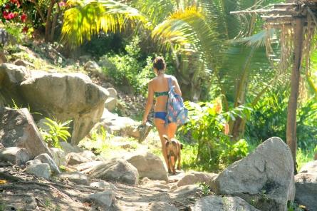 Tropical Hot Springs